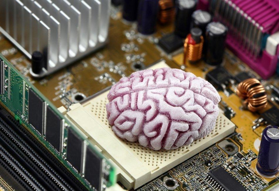 Nosso cérebro não é um computador